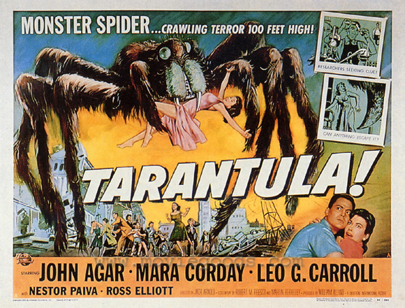 http://images.dead-donkey.com/images/tarantula5vo.jpg